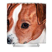 Lewie Shower Curtain