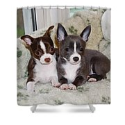 Lexi And Gracie Shower Curtain
