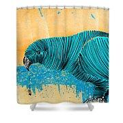 Lib-578 Shower Curtain