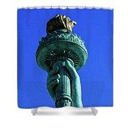 Liberty's Light Shower Curtain