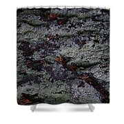 Lichen Texture Shower Curtain