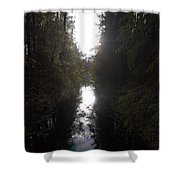 Liesijoki 1 Shower Curtain
