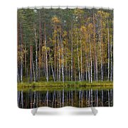 Liesilampi In September 1 Shower Curtain