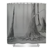 Life 2 Shower Curtain