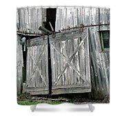 Life Among The Ruins Shower Curtain