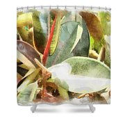Life Anew Shower Curtain