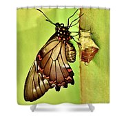Life Erupts Shower Curtain