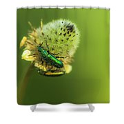 Life In The Meadow Shower Curtain