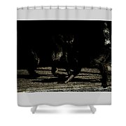 Life In The Shadows Shower Curtain