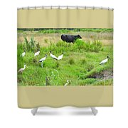Life In The Slough Shower Curtain
