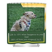 Life Is A Warm Summers Breeze Shower Curtain