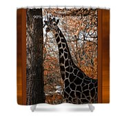 Life Is Standing Tall Shower Curtain