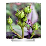 Life Is Abound Shower Curtain