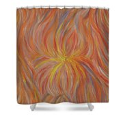Life, Light, And Birth Shower Curtain