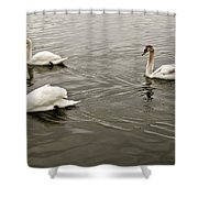 Life Of A Youngster. Shower Curtain