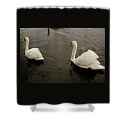 Life Of Swans. Shower Curtain