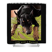 Life With A Purpose Shower Curtain