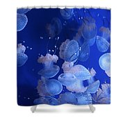 Life Wonders Of The Sea Shower Curtain