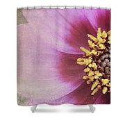 Life's Little Details Shower Curtain