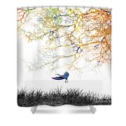 Lift Off Shower Curtain