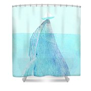 Lift Option Shower Curtain