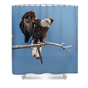 Lift Your Wings Shower Curtain