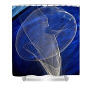 Light And Blue Disc No.106, Thu--17sep2015 Shower Curtain
