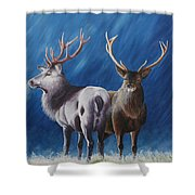 Light And Dark Stags Shower Curtain