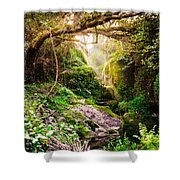 Light And Magic Shower Curtain