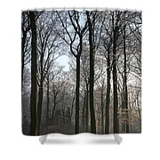 Light And Swadows Shower Curtain