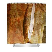 Light As A Fleather Shower Curtain