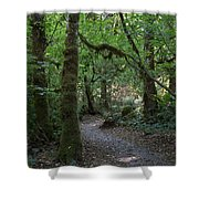 Light At The End Of The Path Shower Curtain