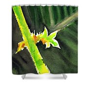 Light Branch Shower Curtain