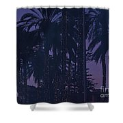 Light Decorated Palm Trees On Paseo Maritimo Shower Curtain