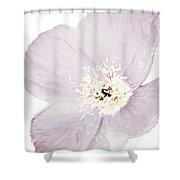 Light Dusty Lavender Poppy Shower Curtain