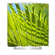 Light Green Palm Leaves Shower Curtain