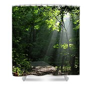 Light II Shower Curtain