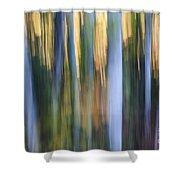 Light In Evening Forest Shower Curtain