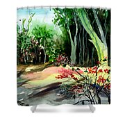 Light In The Woods Shower Curtain