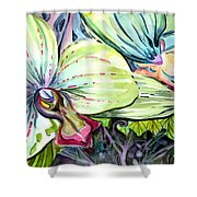 Light Of Orchids Shower Curtain