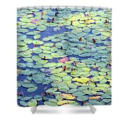 Light On Lily Pads Shower Curtain