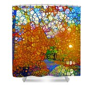 Light On The Autumn Path Shower Curtain