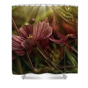 Light On The Cosmos Shower Curtain