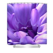 Light Purple Beauty Shower Curtain