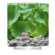 Light Purple Water Lily And Large Green Leaves Shower Curtain