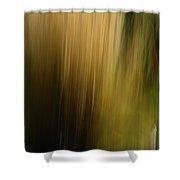 Light Series 5 Shower Curtain