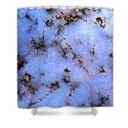 Light Snow In The Woods Shower Curtain