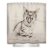 Light Sweet Cat Shower Curtain