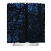 Light Through A Storm Shower Curtain