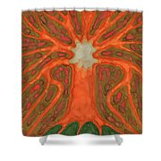 Light Tree Shower Curtain
